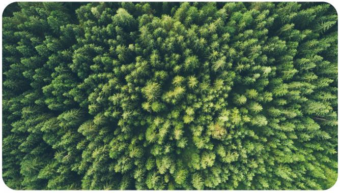EPA Envirofacts